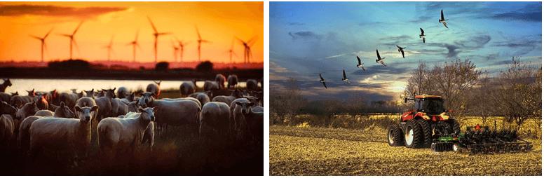 Versicherungsschutz für die Landwirtschaft
