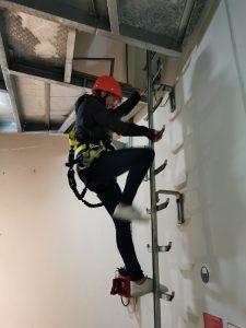 Mitarbeiterin auf Leiter bei WEA-Besteigung