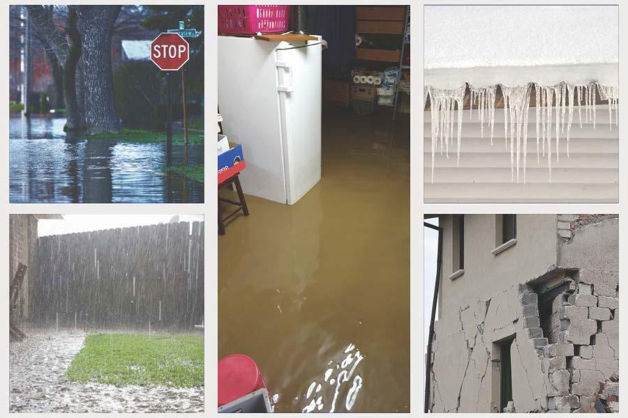 Collage Elementar-Aktion Überschwemmung Starkregen Erdbeben Schneelast