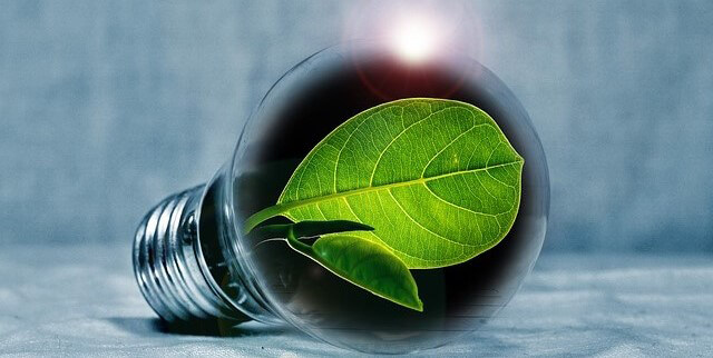 Energiespeicher Glühbirne Blatt