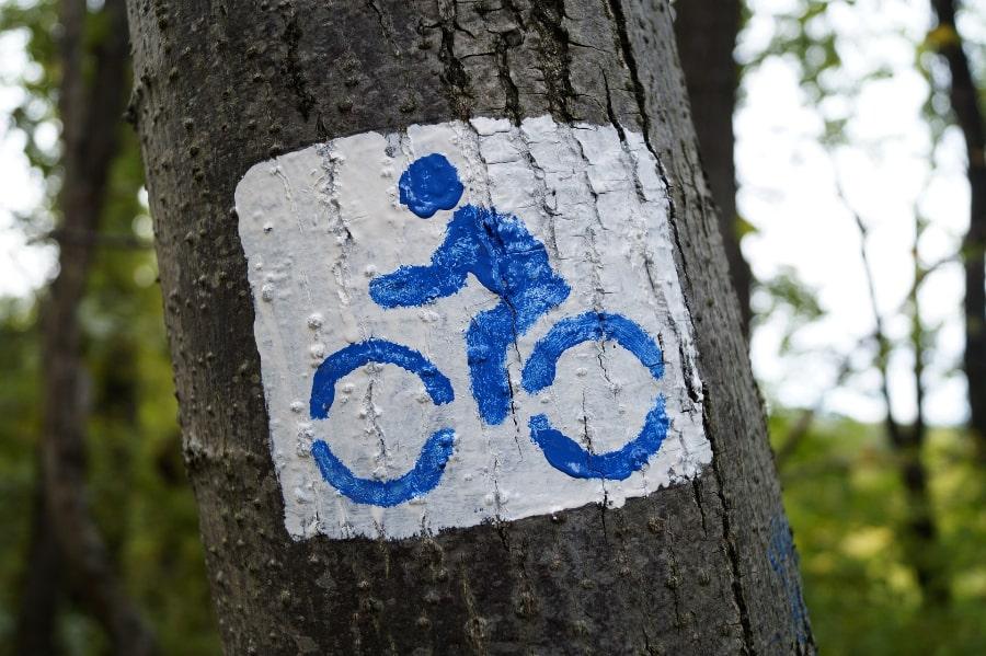 Fahrradzeichen auf Baum