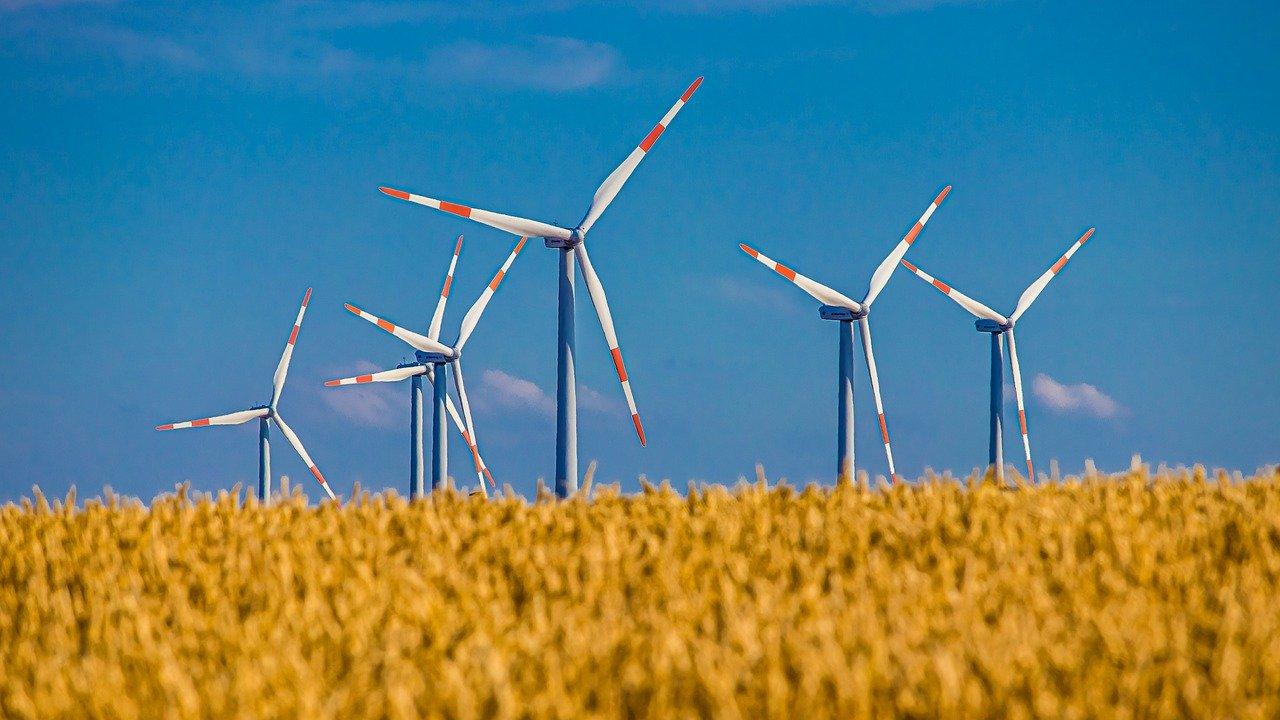 Windräder auf Weizenfeld